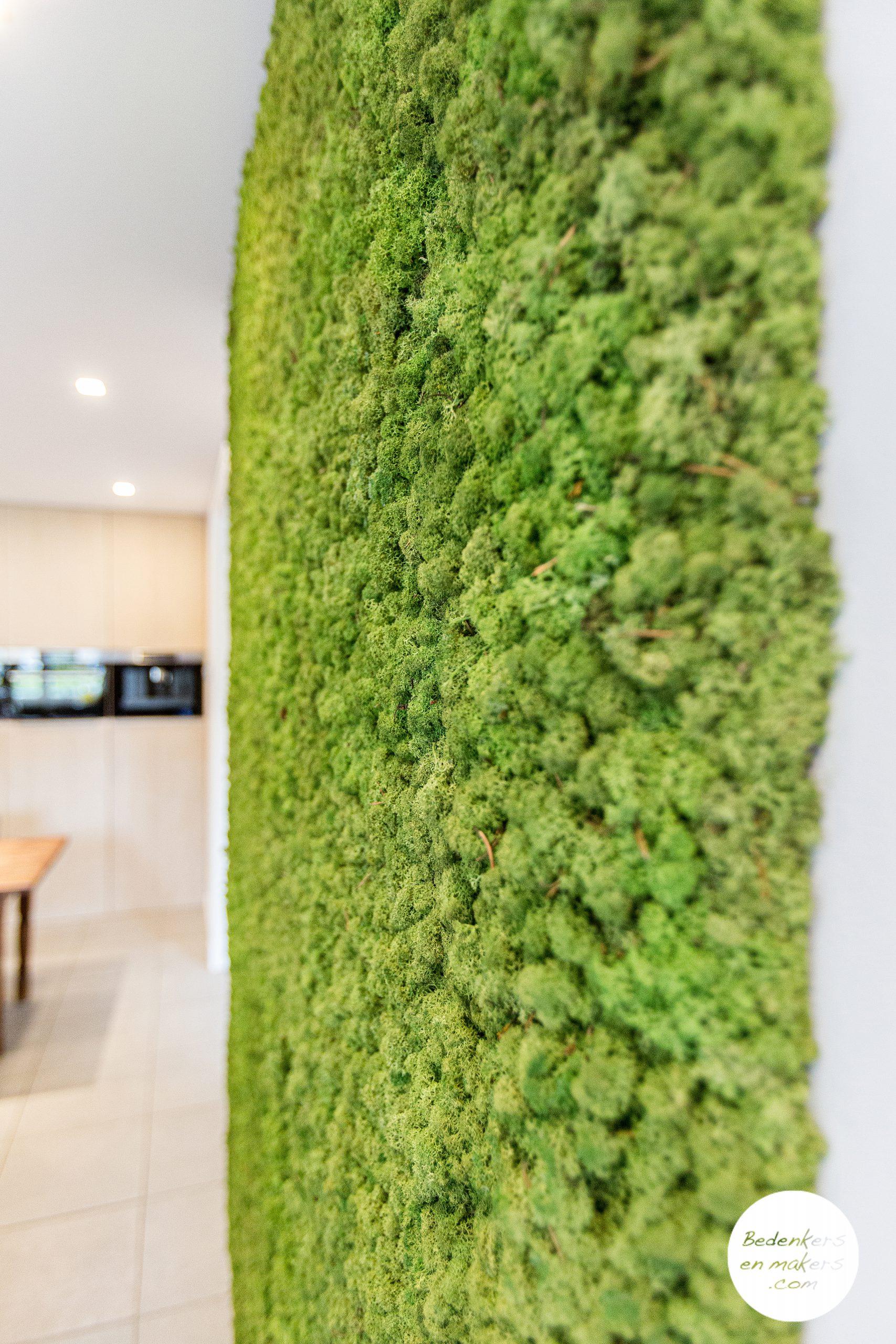 Een moswand in een keuken ziet er mooi uit en geeft veel minder galm  S20C217401